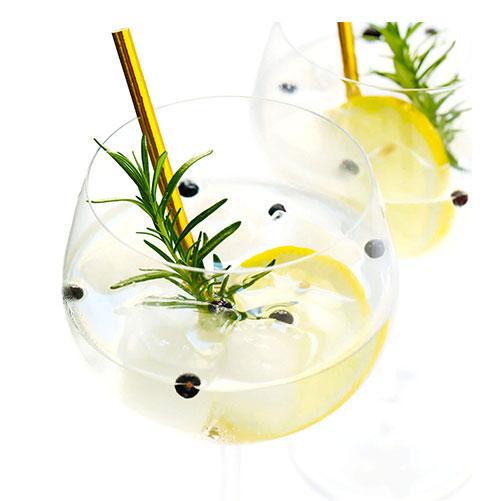 Začini za koktele i Gin